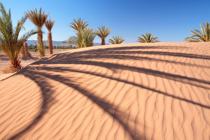 Dubai Red Dunes Desert Safari Adventure, ,