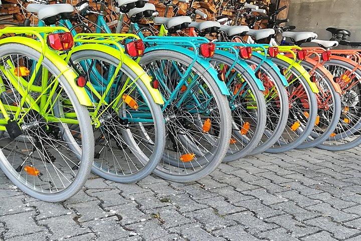 Neuschwanstein castle BikeTour from Munich by train incl.bike ride in fuessen, Fuessen, GERMANY