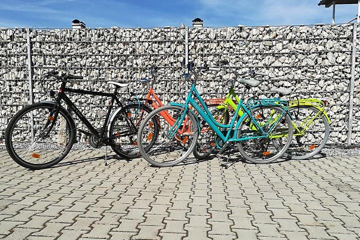 Recorrido en bicicleta por el castillo de Neuschwanstein desde Múnich en tren con paseo en bicicleta por Fuessen, Fuessen, ALEMANIA