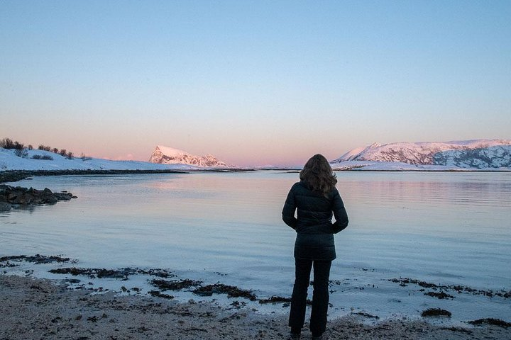 Arctic Roadtrip: Sommarøy with scenic picnic Ⓥ | Small group 8 max | Sightseeing, Tromso, NORUEGA