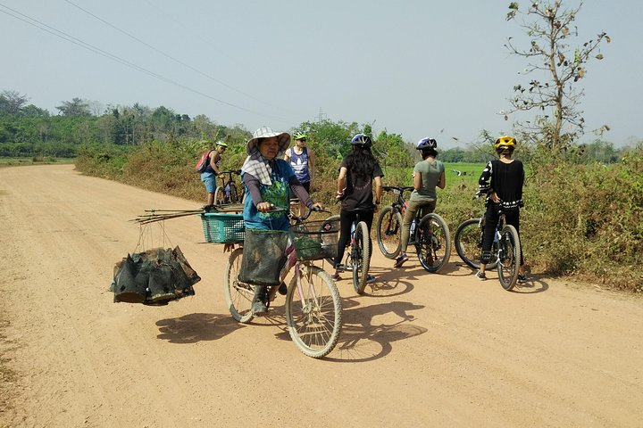 Half Day Cycling Tour to the White temple, Chiang Rai, Tailândia