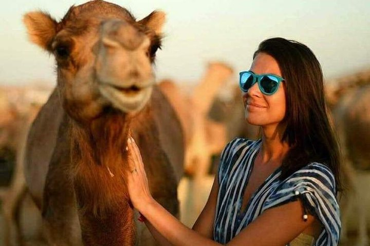 Abu Dhabi Desert Safari 4x4, BBQ Dinner, Camel Ride, Abu Dabi, EMIRADOS ÁRABES UNIDOS
