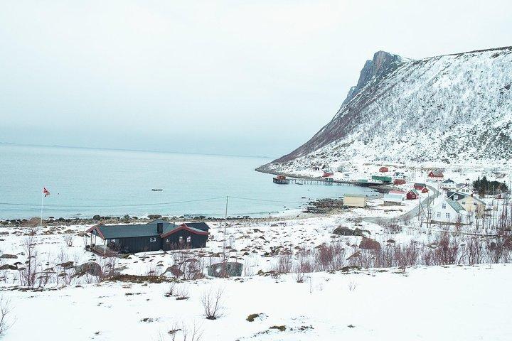 Arctic Fjord Sightseeing by Minibus, Tromso, NORUEGA