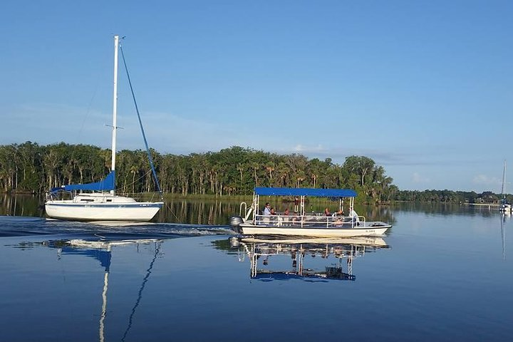Kings Bay Scenic Cruise from Crystal River, Crystal River, FL, ESTADOS UNIDOS