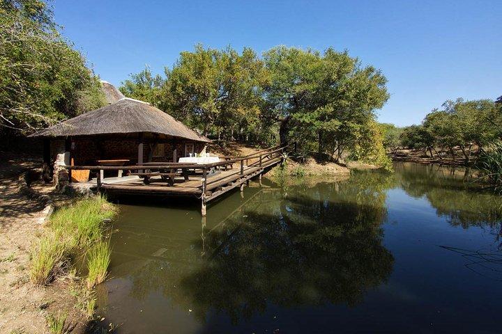 4 dias em pousada e casa na árvore e Safári no Parque Nacional de Kruger, Johannesburgo, África do Sul