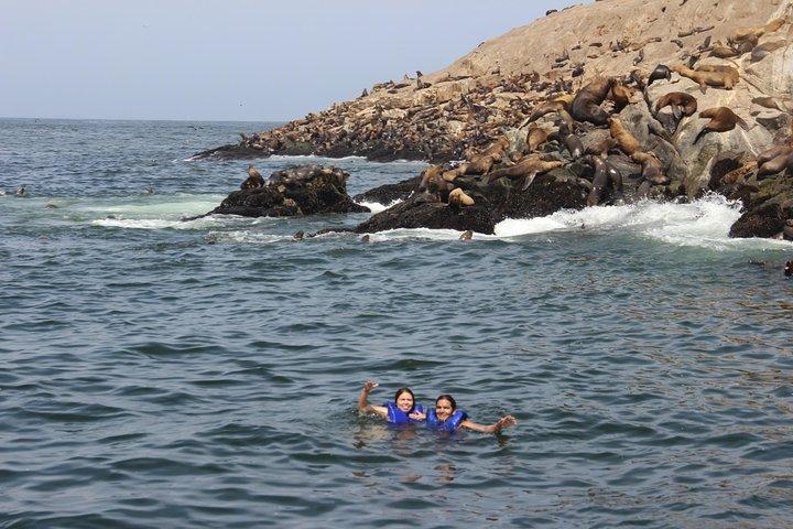 Cruzeiro pelas Ilhas Palomino e a experiência de nadar com leões-marinhos, partindo de Lima, Lima, PERU