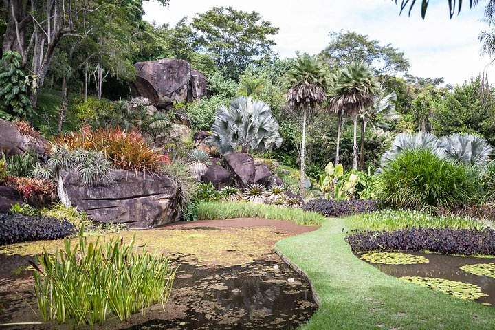 Sitio Roberto Burle Marx Guided Tour, Admission & Transfer, Rio de Janeiro, BRAZIL