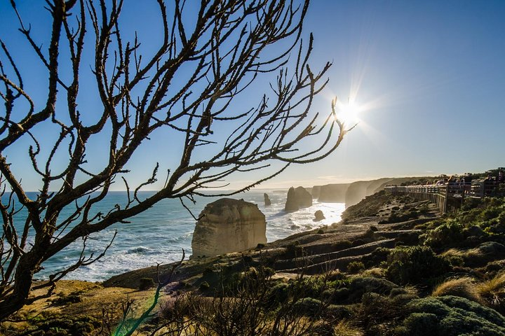 Great Ocean Road Tour with Instagram Sunset views at 12 Apostles from Melbourne, Gran Carretera Oceanica, Austrália
