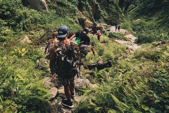 Puerto Rico Guided Adventure in El Yunque rainforest, ,