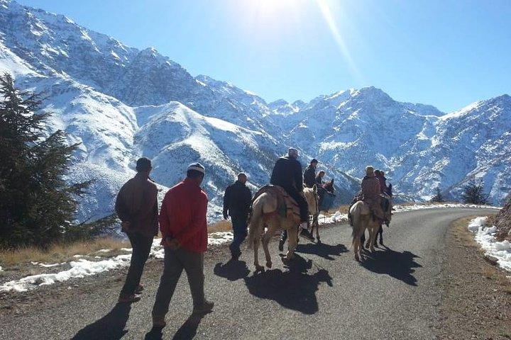 Atlas Mountains and Three Valleys & Waterfalls - Camel ride Day Trip Marrakech, Marrakech, Ciudad de Marruecos, MARRUECOS