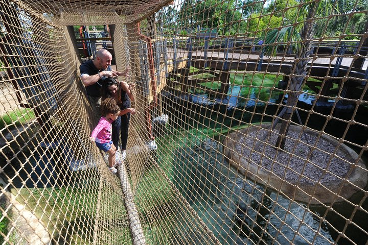 Ingresso para o Zoo Miami com upgrade opcional, Miami, FL, ESTADOS UNIDOS