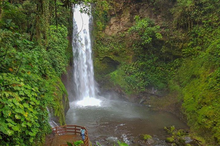 Super Combo Tour: Waterfalls Gardens + Tour de Café + Volcán Poás, San Jose, COSTA RICA