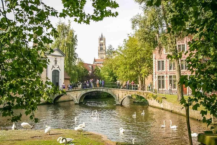 Private Transfer from ZeeBrugge or Bruges to Antwerp By Luxury car, Brujas, BELGICA