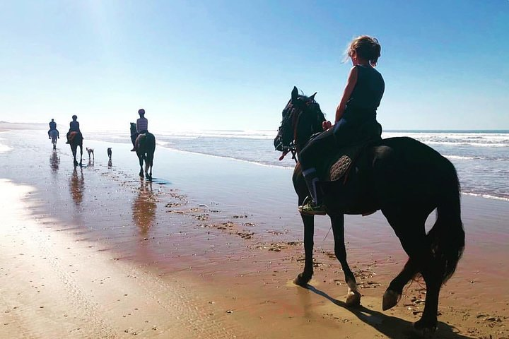Horse riding at Essaouira beach 2h, Esauira, MARRUECOS