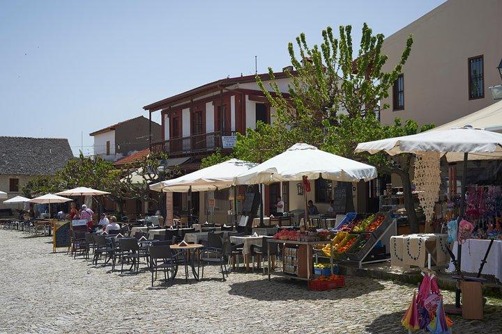 Troodos 4X4 Safari Tour from Larnaca, ,