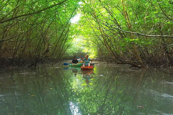 Khao Lak Mangrove Explorers, ,