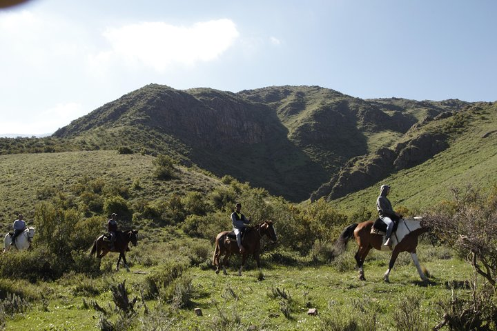 Horseback Riding in the Andes with Barbecue Lunch in Traditional Ranch, Mendoza, ARGENTINA