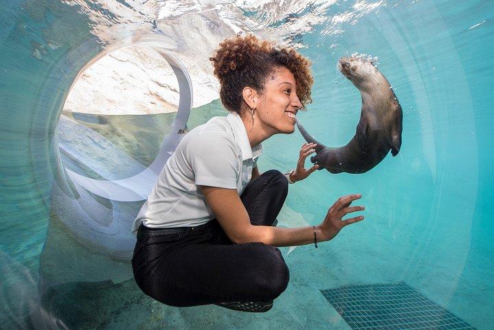 Go Miami All-Inclusive Pass with Hop-on Hop-off and Zoo Miami, Miami, FL, ESTADOS UNIDOS