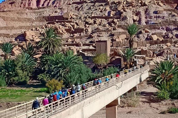 3-Day Small-Group Fez to Marrakech Desert Tour, Fez, MARRUECOS