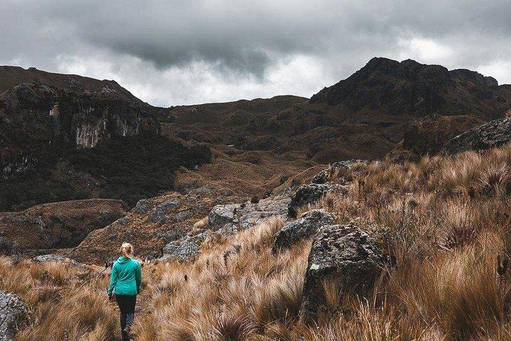 Shared Trekking Full-Day Tour at Cajas National Park, Cuenca, ECUADOR