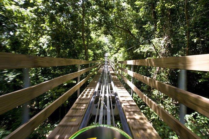 Jamaica Bobsled Adventure Tour from Falmouth, Montego Bay, JAMAICA