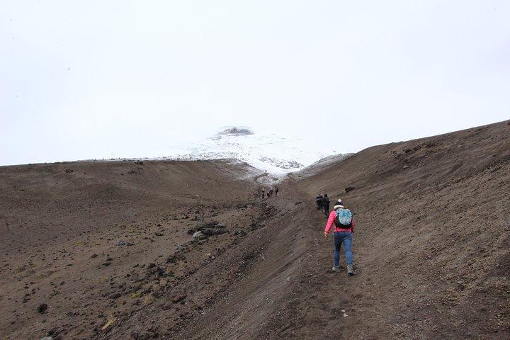 Salidas todos los días: recorridos para grupos pequeños al volcán Cotopaxi desde Quito, Quito, ECUADOR