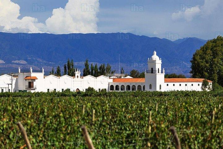 Bodegas y Aceiteras - Mendoza, Mendoza, ARGENTINA