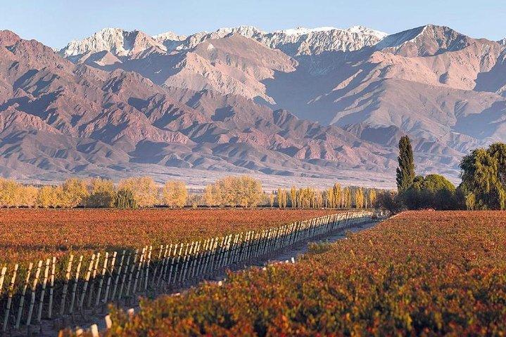 Experiencia Valle de Uco - Mendoza, Mendoza, ARGENTINA