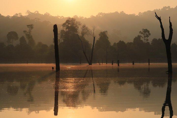 Khao Sok Wildlife 2 Days, Khao Lak, TAILANDIA