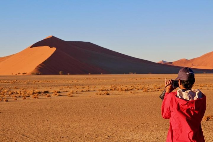 6-Day Dunes and Wildlife Accommodated Safari from Windhoek, Windhoek, Namibia