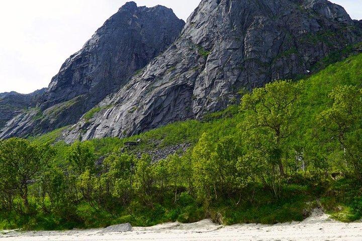 Fjord Sightseeing - Eco friendly Tesla Model X, Tromso, NORUEGA