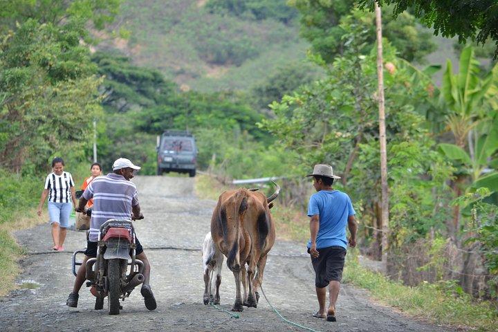 Tour en bicicleta: Los Lojas - Un secreto natural. Desde Guayaquil, Guayaquil, Equador