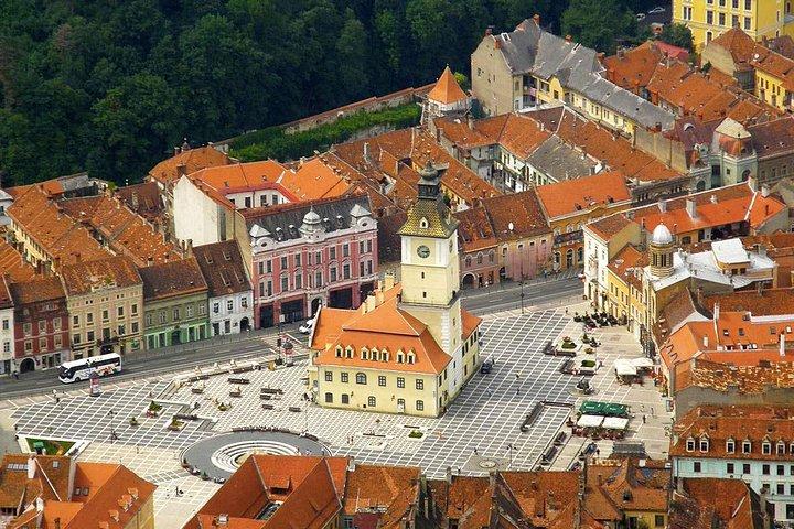 One day trip Bear Sanctuary and Rasnov Fortress from Brasov, Brasov, RUMANIA