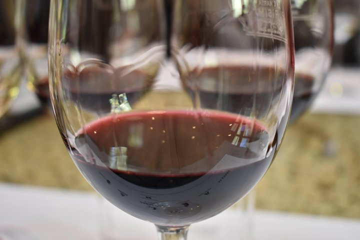 Valle de Uco Wine Tour, Mendoza, ARGENTINA