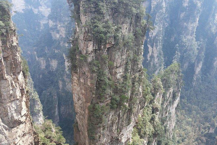 Zhangjiajie National Forest Park(Avatar) &Drop off at Fenghuang Private Day Tour, Zhangjiajie, CHINA