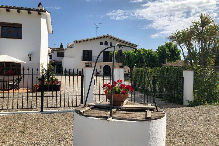 Amidst the Vineyards: Wineries & Lunch!, Tarragona, ESPAÑA