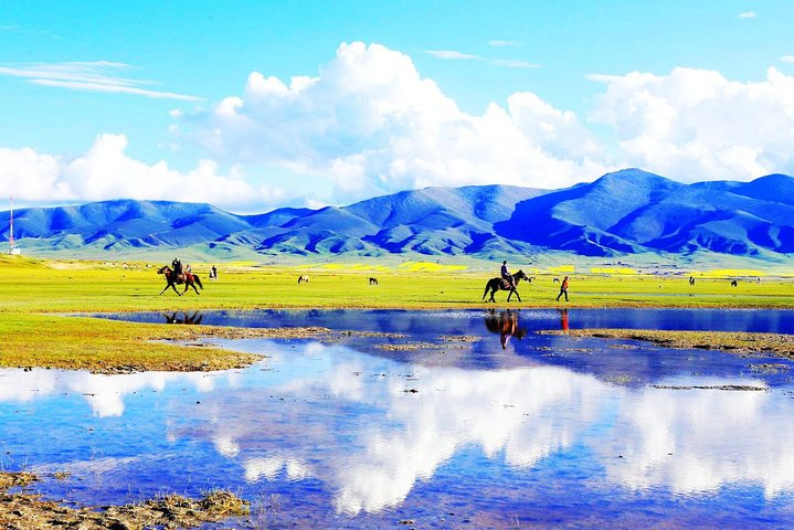 Private Independent Tour to Qinghai Lake and Ta'er Monastery from Xining, ,