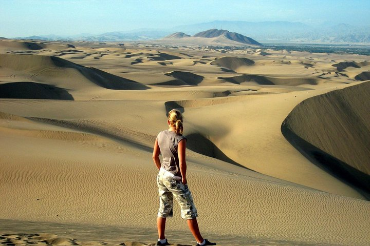 Full-Day Group Tour Paracas and Ica from Lima, Lima, PERU