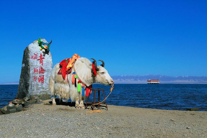 2-Day Xining Private Tour: Qinghai Lake, Ta'er Monastery, Dongguan Mosque and More, Xining, CHINA
