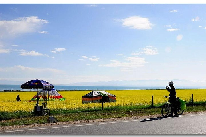Private Xining Day Trip to Qinghai Lake with Flexible Departure Time, Xining, CHINA