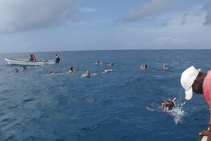 Kizimkazi Dolphin Tour, ,