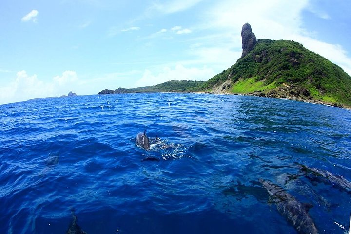 Swim in Sancho Bay leaving Fernando de Noronha, Fernando de Noronha, BRAZIL