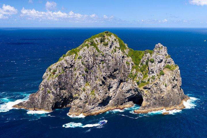 Dolphin Cruise to the Hole in the Rock with Island Stopover - Morning Cruise, Bahia de Islas, NUEVA ZELANDIA