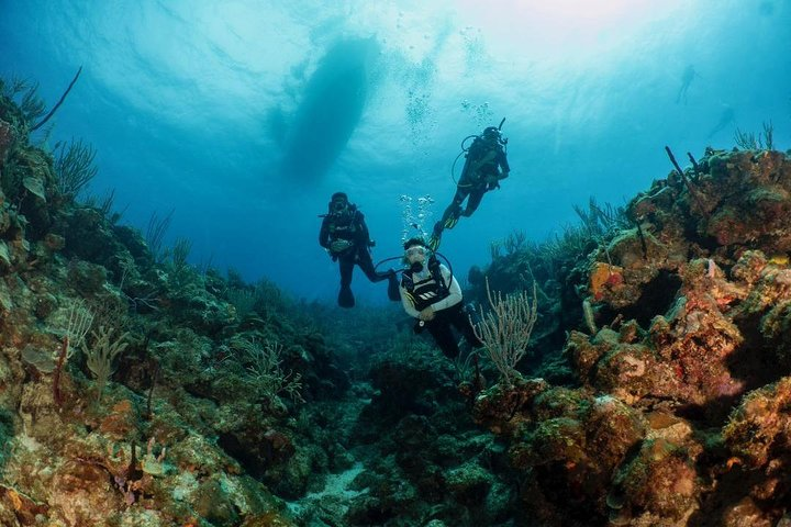 Fajardo 2 tank dive (only for Certified Divers-Check in at 7:45am), ,