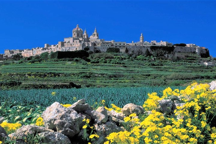 Private guided Malta tour with professional, licensed guides, Mellieha, MALTA