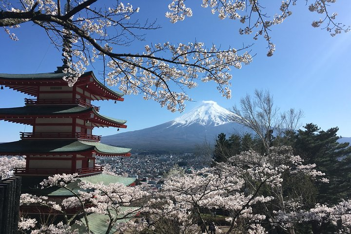 Private Mt Fuji and the Gotemba Outlet in One Day from Tokyo, Tokyo, JAPON