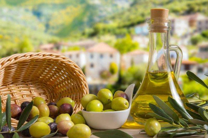 Villena and Winery Private Shore Excursion from Alicante, Alicante, ESPAÑA