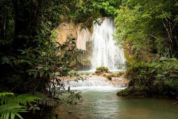 Samana y Salto el Limon, Punta de Cana, REPUBLICA DOMINICANA