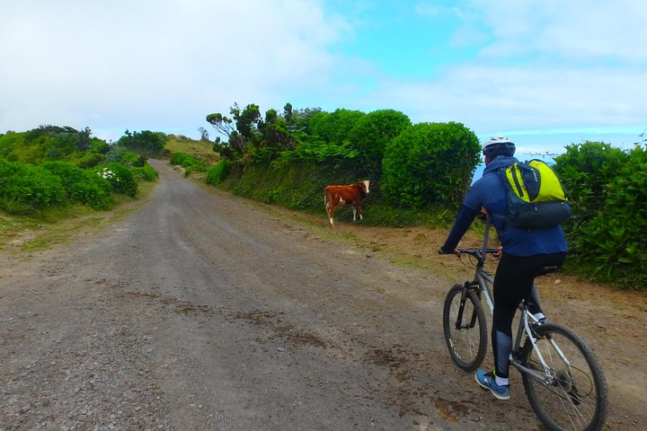 Exploring Sete Cidades by bike, ,
