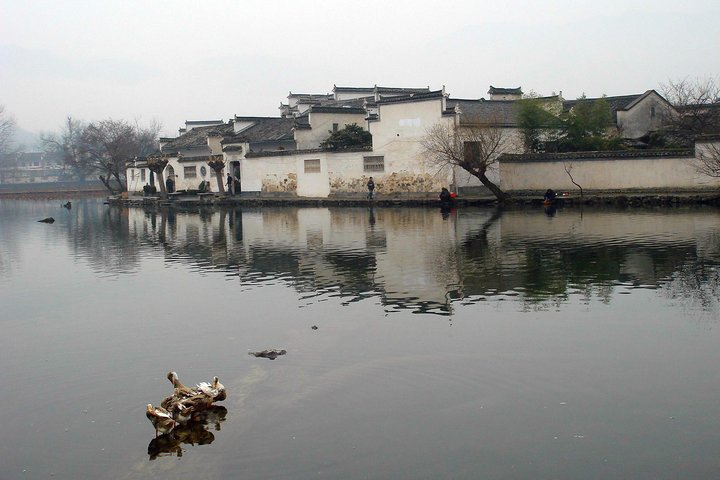 Half day Hongcun village(near Huangshan) Group Tour-No Shopping, Shenyang, CHINA